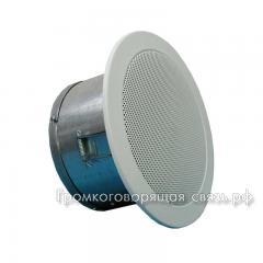 Громкоговоритель 6АС100ППм - вид сбоку